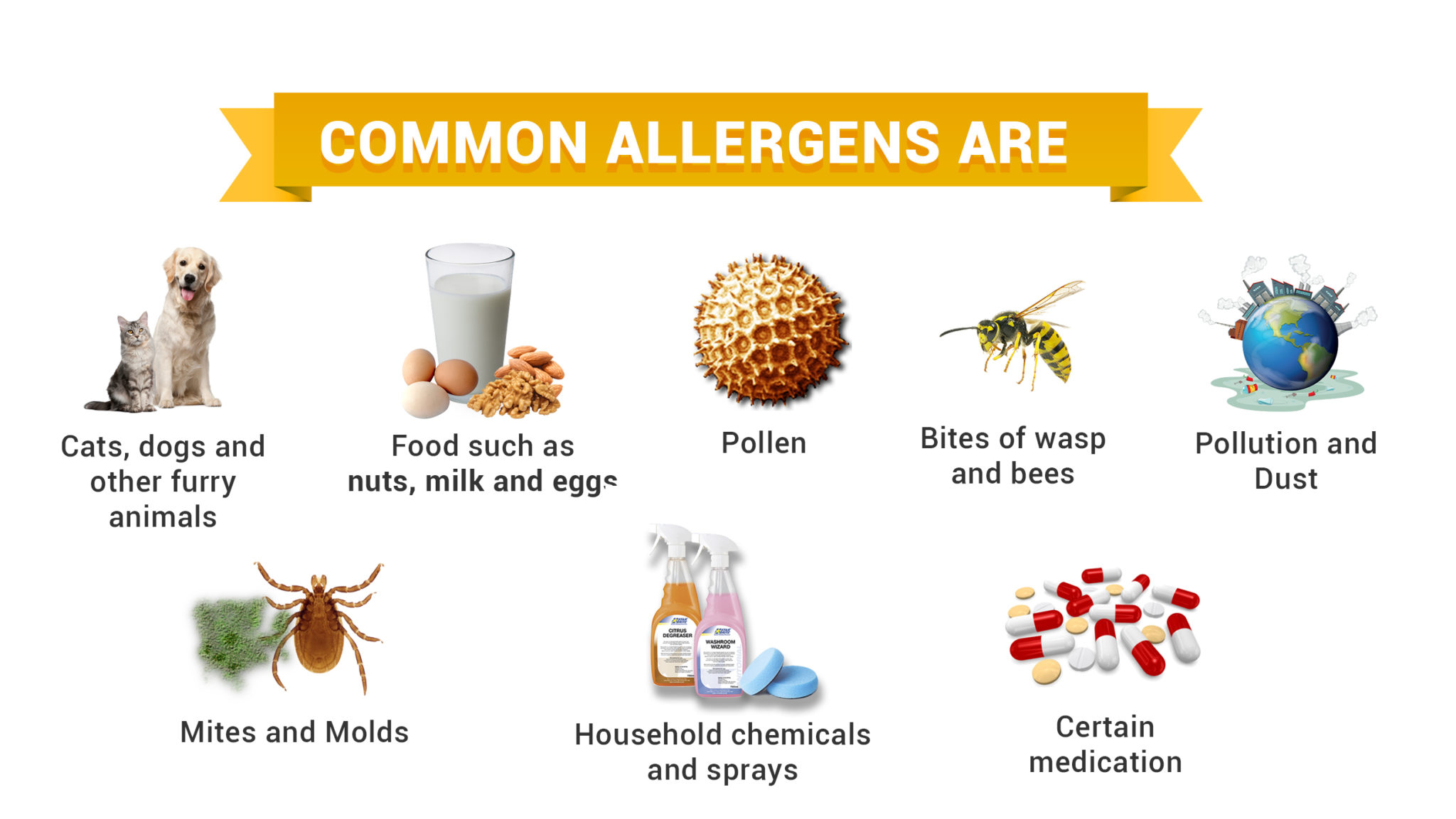 Common Allergens