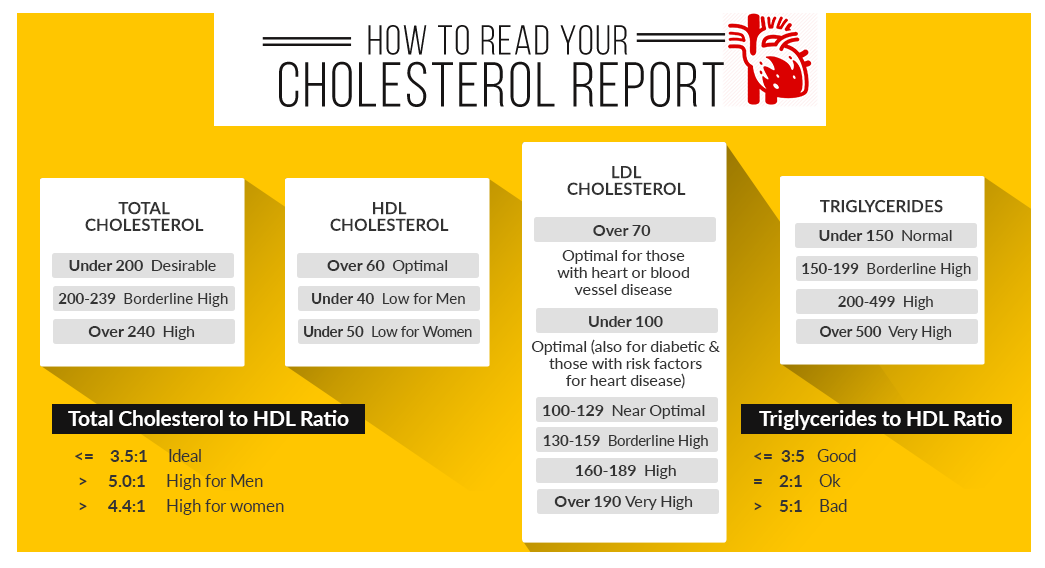 How to read your cholesterol report
