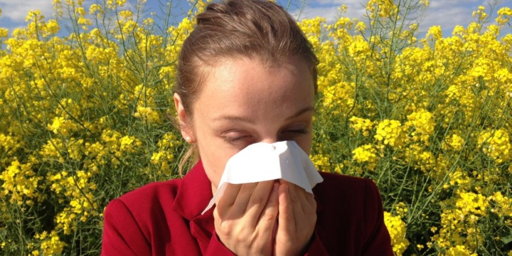 Treat allergy with Ayurveda, naturopathy, and homeopathy