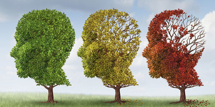 Treat Alzheimer's with Ayurveda, Naturopathy, and Homeopathy