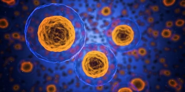 Tackling autoimmune diseases