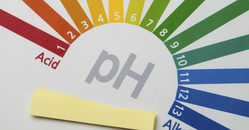 How to Maintain Acid-Alkaline Balance? – A Complete Guide