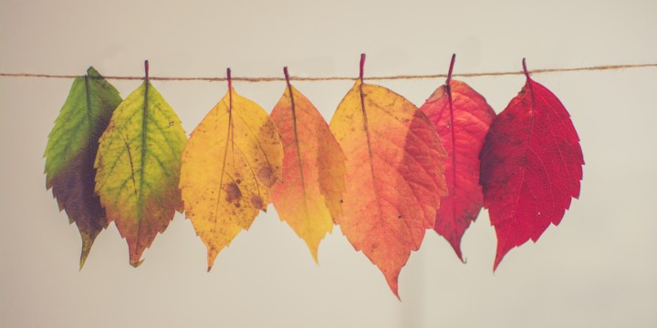How to Stay Healthy Through Seasonal Change