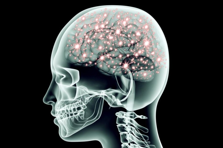 The Role of the Vagus Nerve in your Health